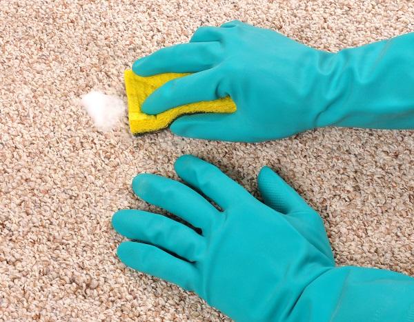 چگونه از شامپو فرش استفاده کنیم